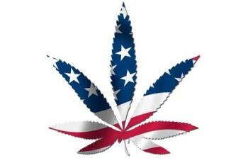 marijuana-american-flag